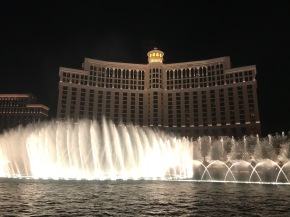 The Beauty of the Bellagio